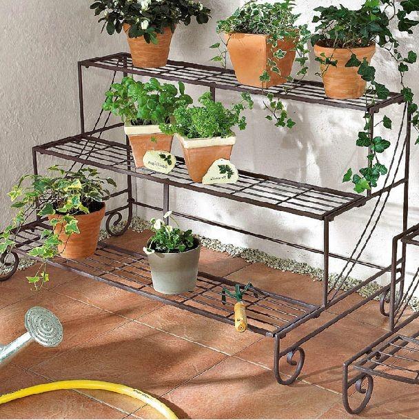 Напольные растения для балкона..